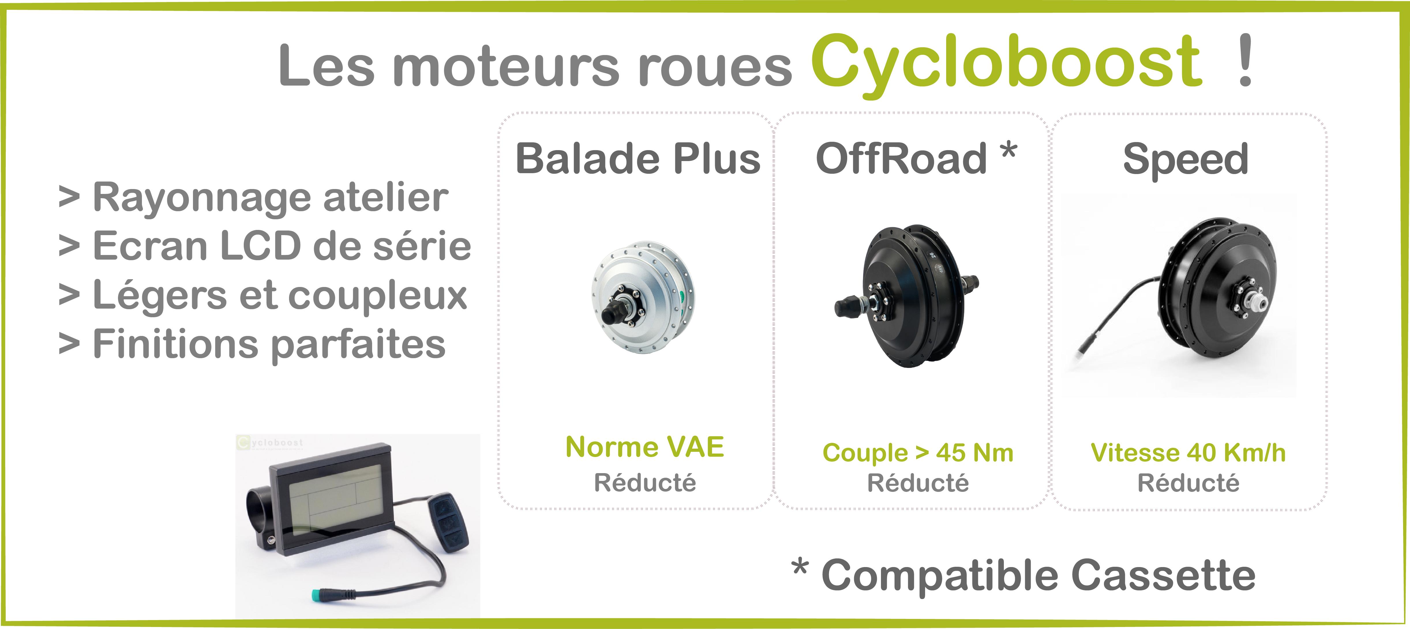 Moteur roue Vélo électrique